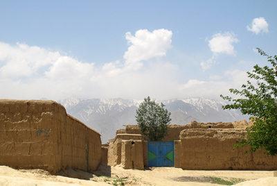 Afghan High Tea – Now Roz 1400